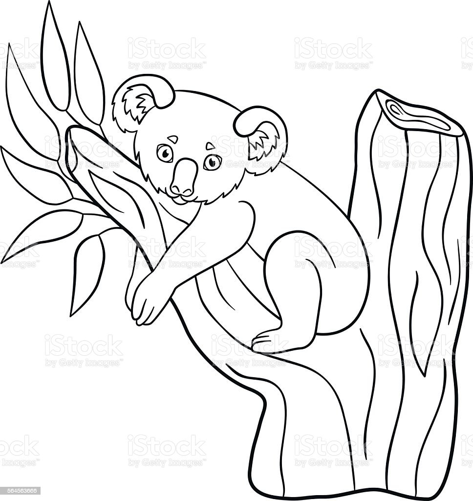 coloring pages little cute baby koala smiles stock vector art