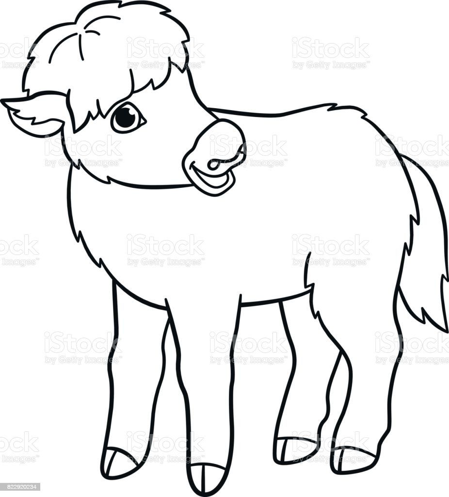 Coloring Pages Little Cute Baby Yak Royalty Free Stock Vector Art
