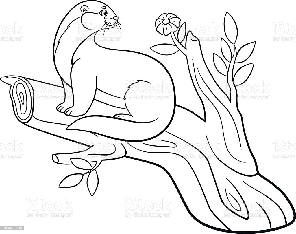 coloring pages little cute otter sits on the tree branch vektor