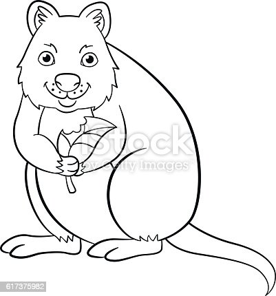 Coloring Pages Little Cute Quokka Holds The Leaf stock vector art