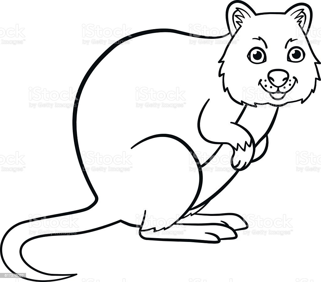 coloring pages little cute quokka smiles stock vector art