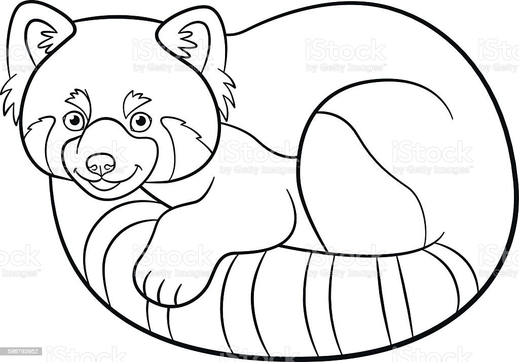 Coloring Pages Little Cute Red Panda stock vector art 596793952