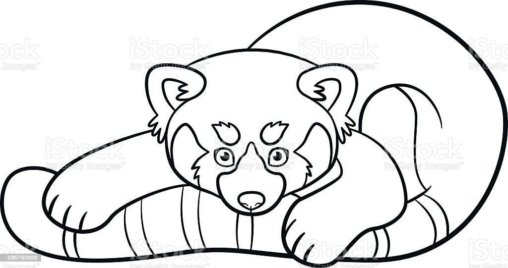 Coloring Pages Little Cute Red Panda stock vector art 596793998