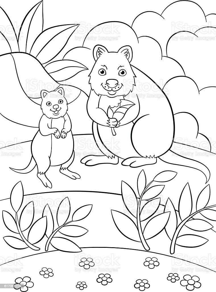 Coloring Pages Mother Quokka With Her Cute Baby stock vector art