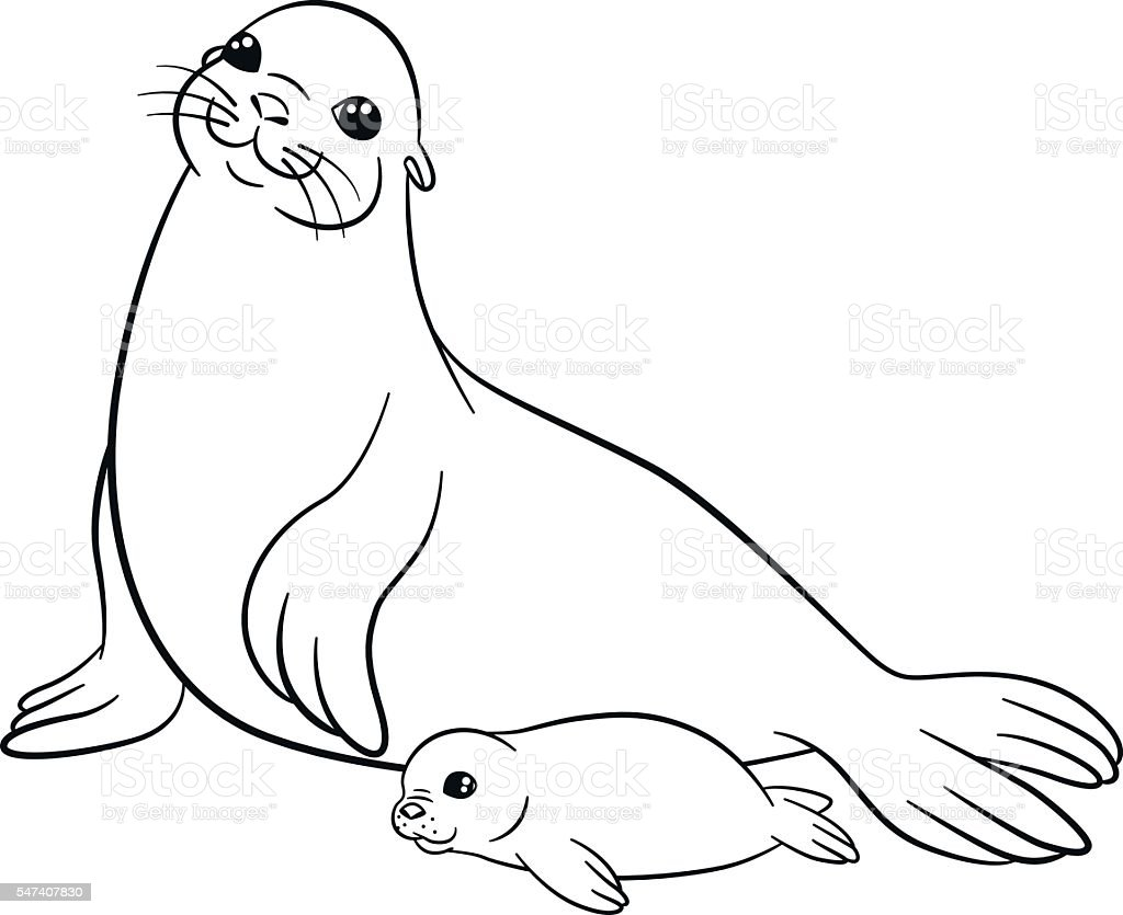 coloring pages mother seal with her little cute baby stock vector