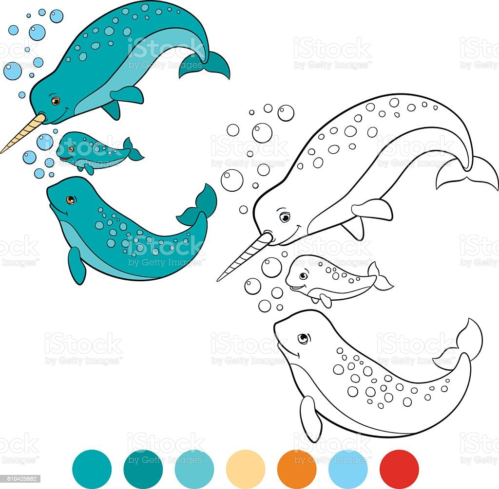 coloring pages narwhal little cute narwhal swims stock vector art