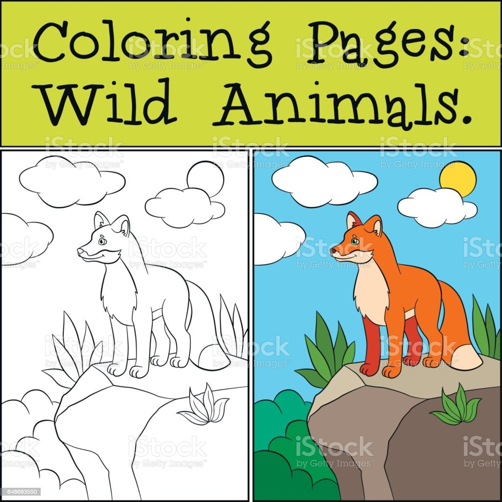 134 best images about <b>rock</b> painting wolf and <b>fox</b> on Pinterest