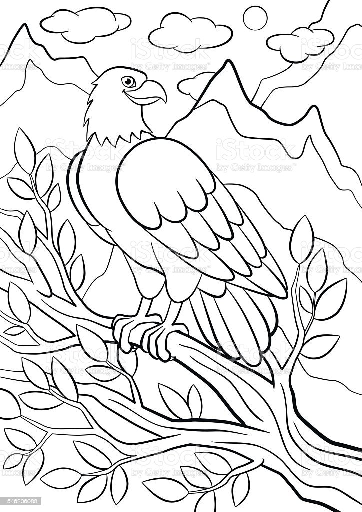 Coloring pages. Wild birds. Cute eagle on the tree branch vector art illustration