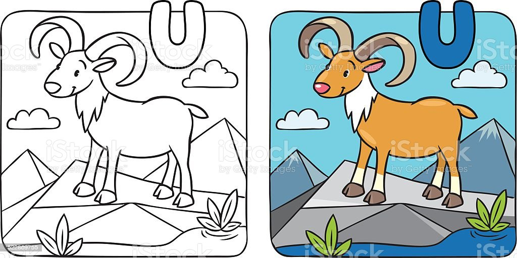 Coloring picture of funny urial. Alphabet U vector art illustration