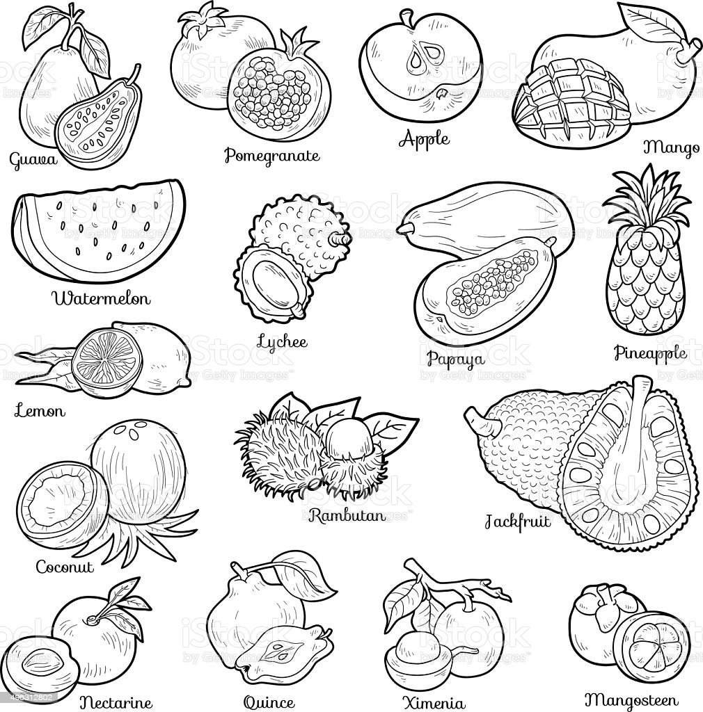 Colorless set with tropical fruits, vector cartoon stickers vector art illustration