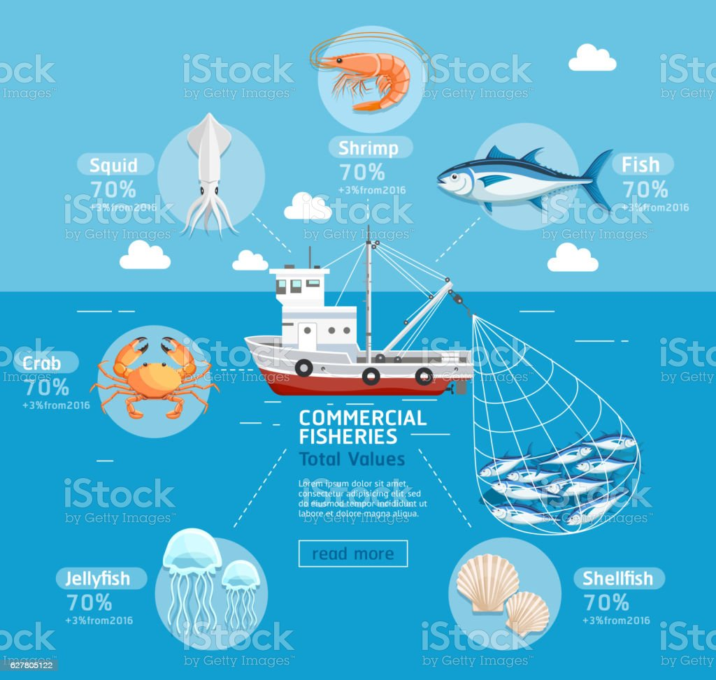 Commercial fishing business plan infographics. vector art illustration