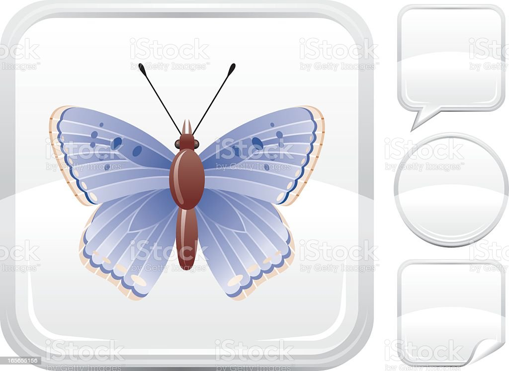 Common blue butterfly icon on silver button vector art illustration