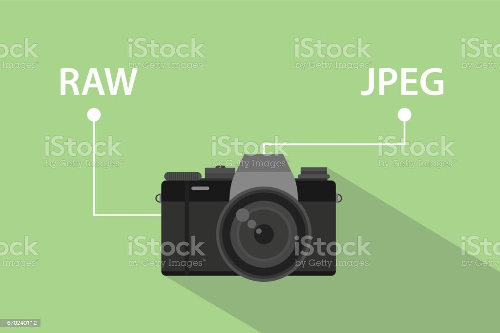 Comparing format file of camera between RAW format and JPEG format illustration with camera icon and green background vector art illustration
