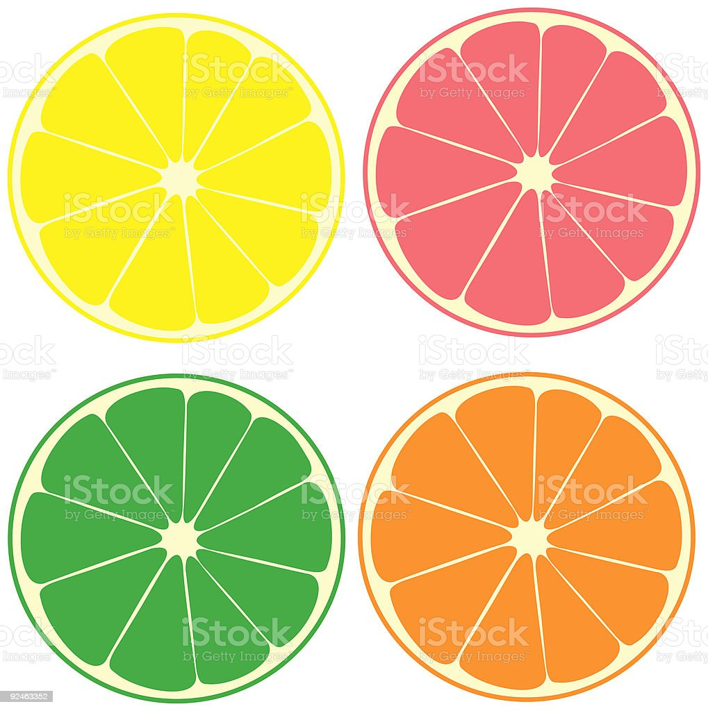Compilation of colored citrus fruits  royalty-free stock vector art