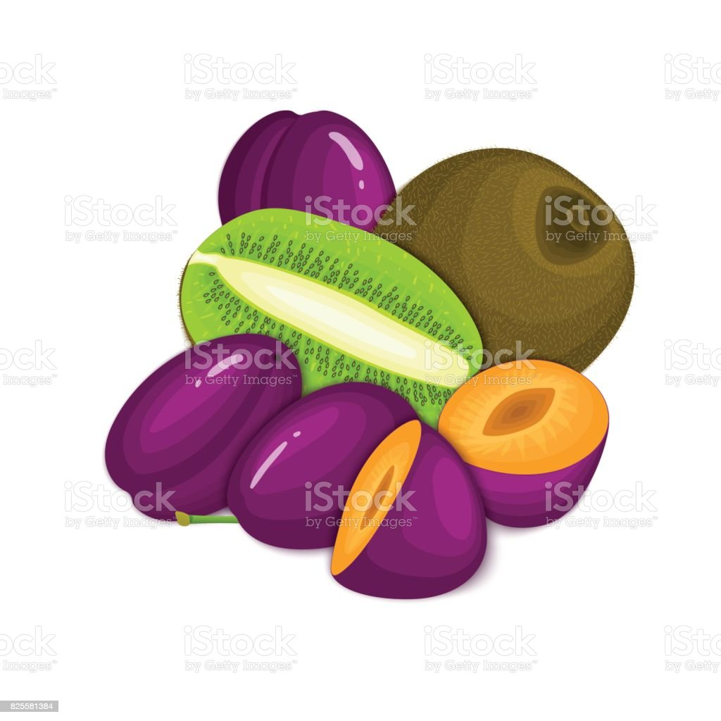 Composition of juicy plumand kiwi. Ripe vector kiwifruit and plum fruits whole  slice appetizing looking. Group  tasty  for design packaging  juice, breakfast healthy eating vegan vector art illustration