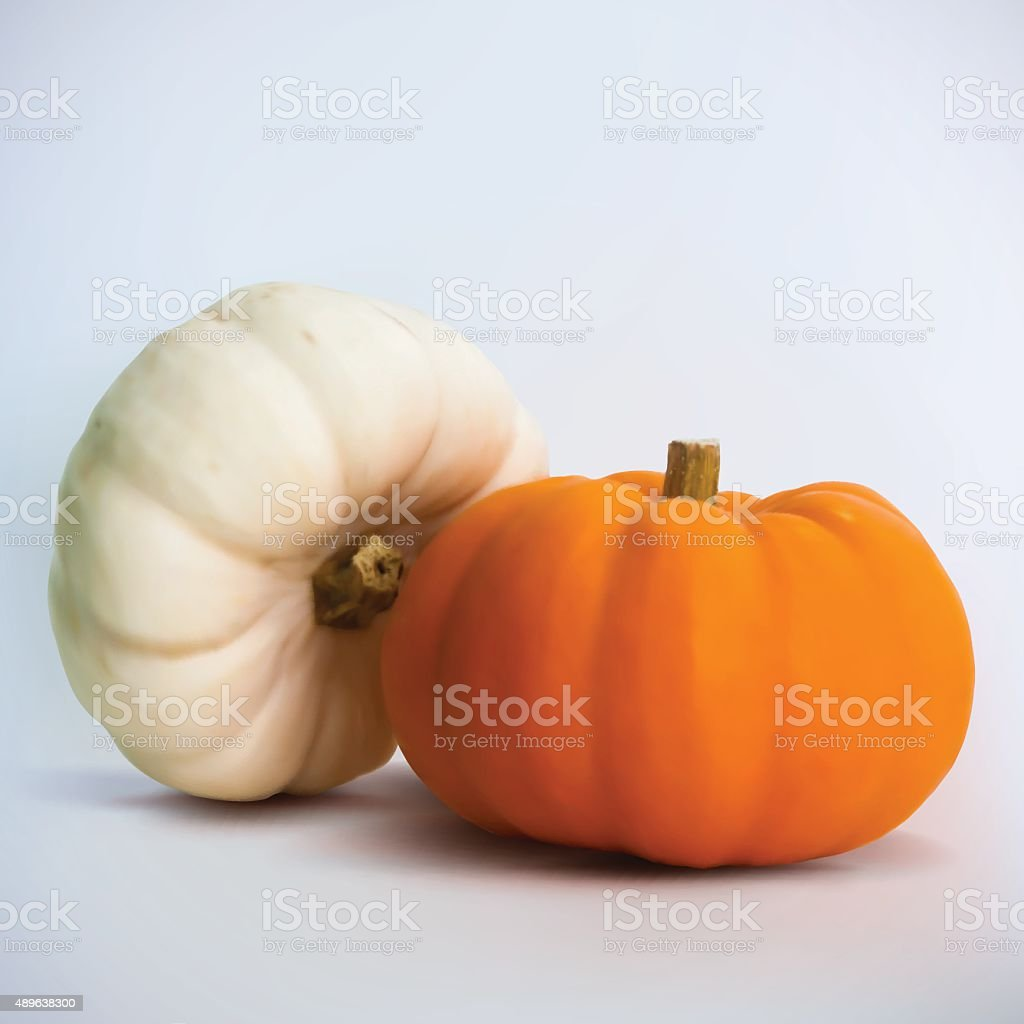 composition of white and red pumpkins vector art illustration