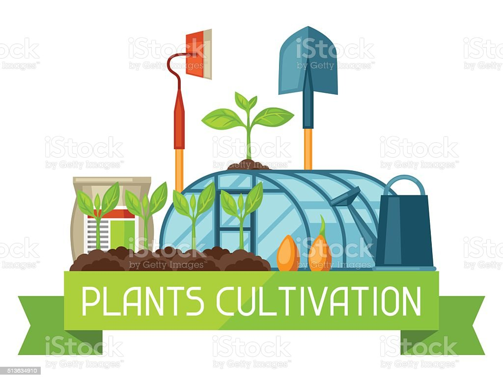 Concept with agriculture objects. Instruments for cultivation, plants seedling process vector art illustration