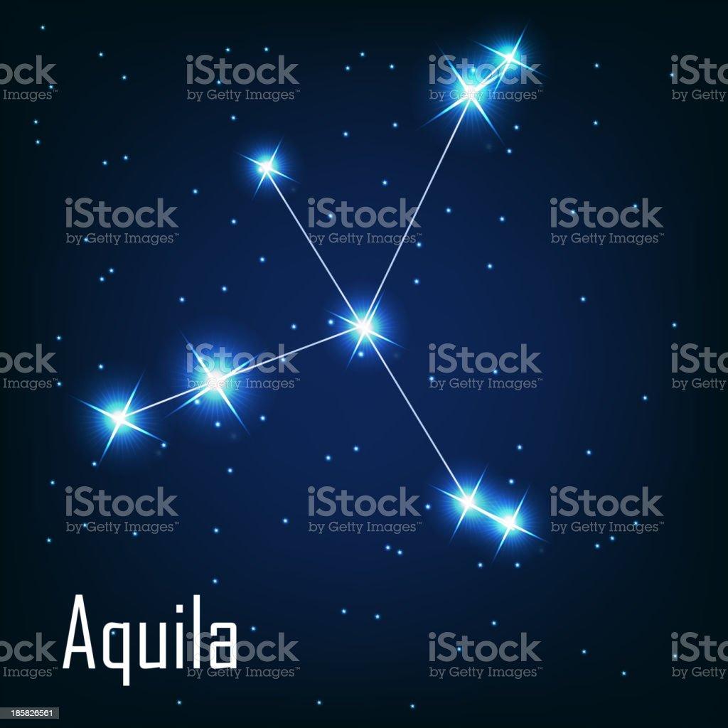 constellation 'Aquila' star in the night sky. Vector illustr royalty-free stock vector art