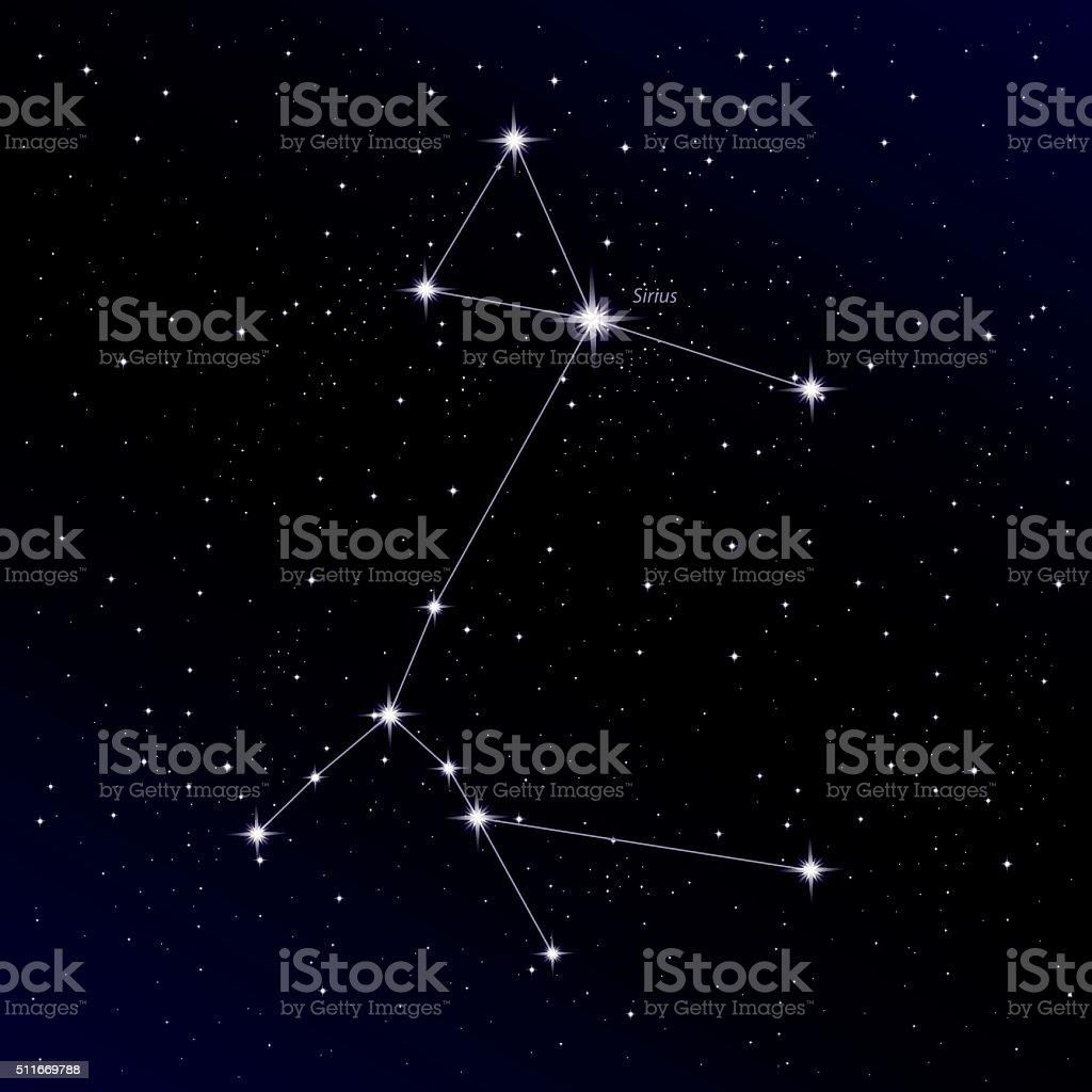 Constellation Canis Major vector art illustration