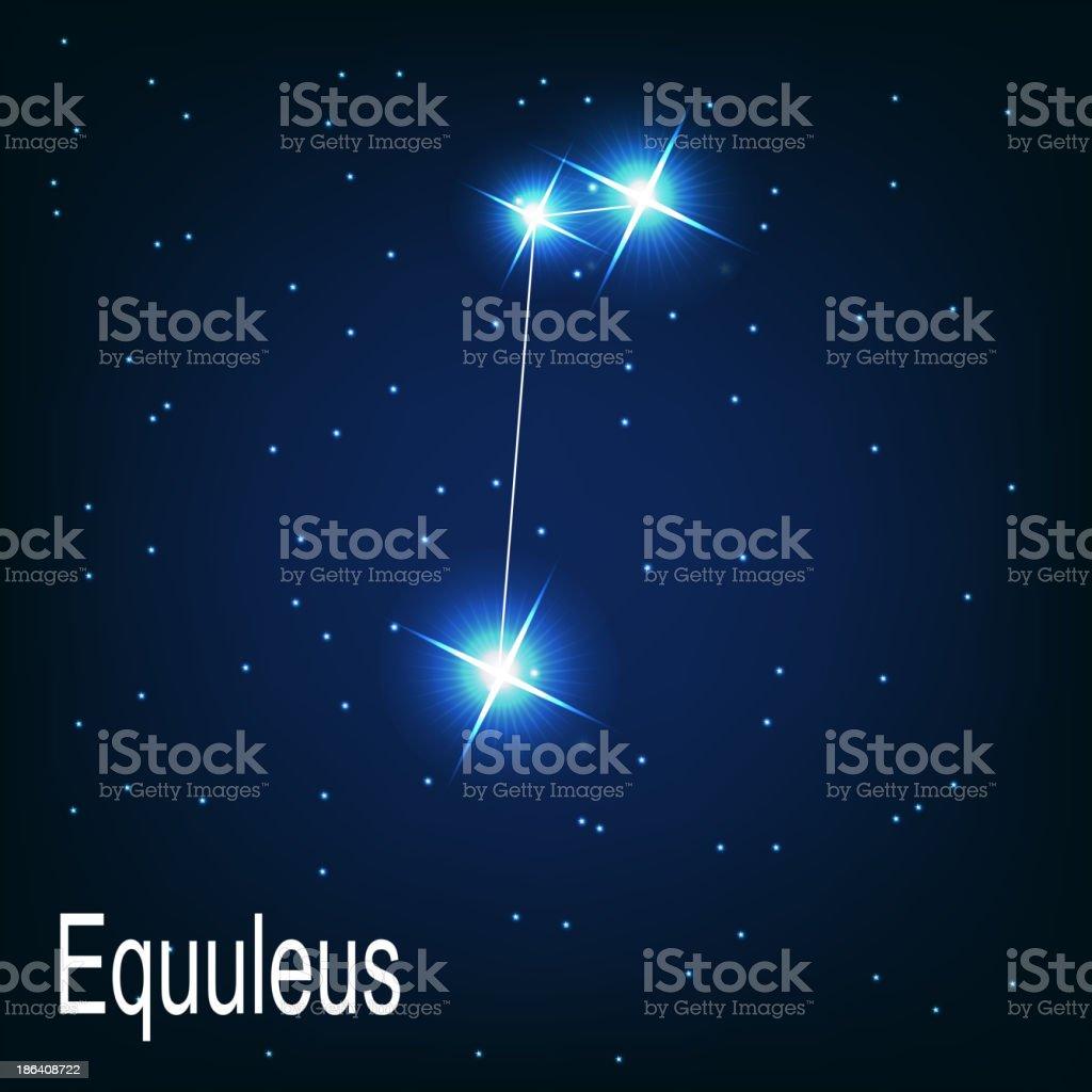 constellation 'Equuleus' star in the night sky. Vector illus royalty-free stock vector art