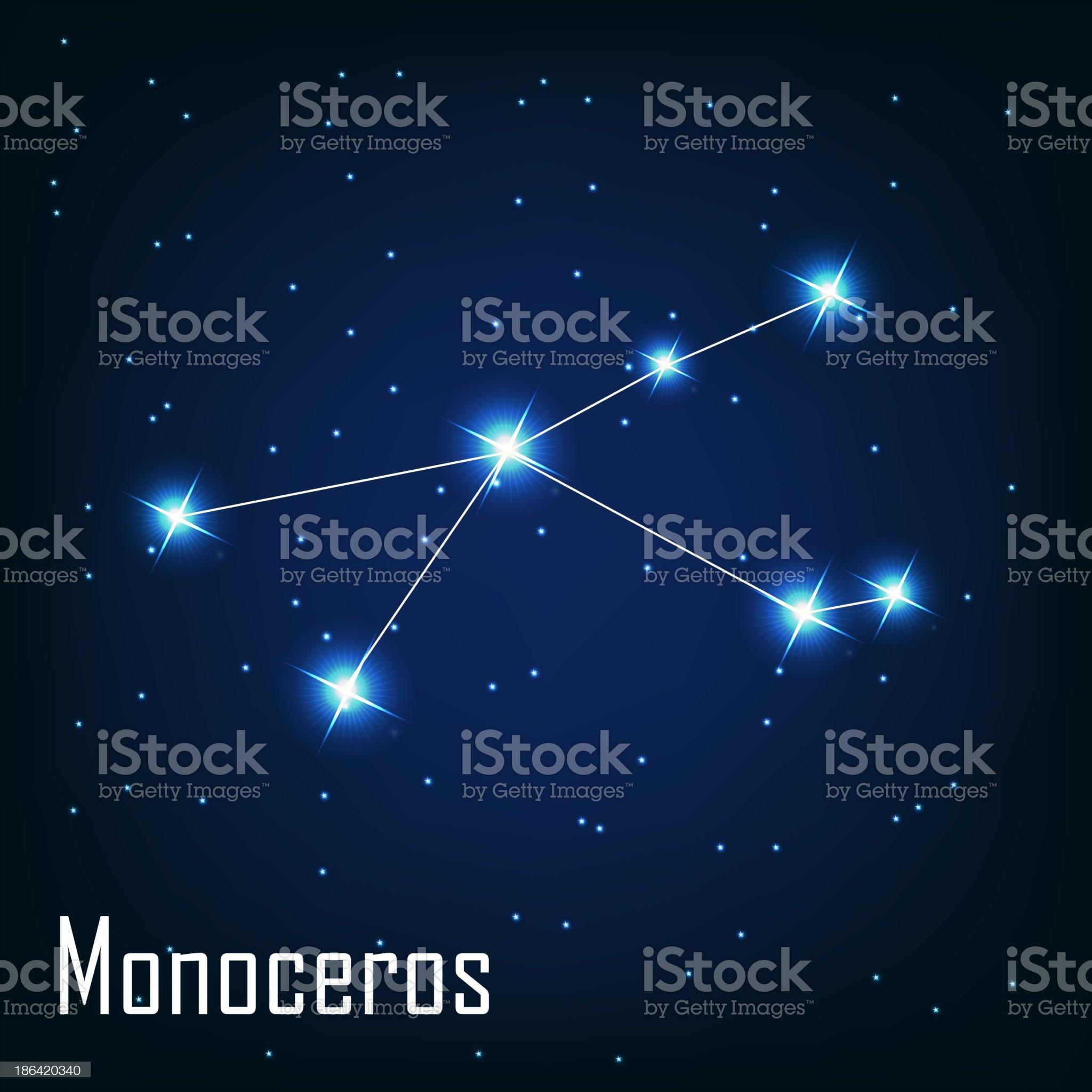 constellation ' Monoceros' star in the night sky. Vector ill royalty-free stock vector art