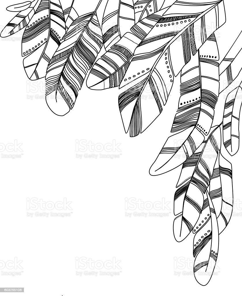 Contour feathers background. vector art illustration