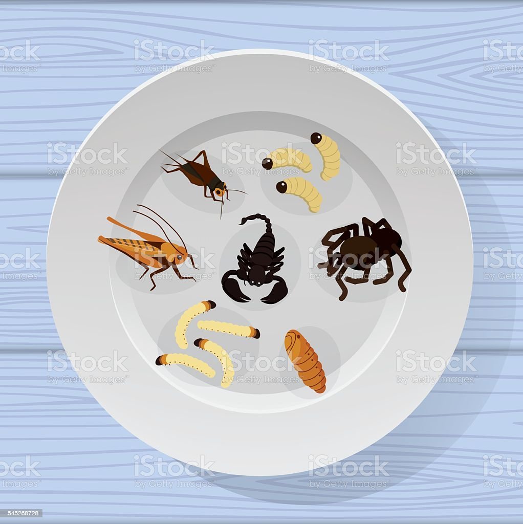 cooked insects in a plate vector art illustration