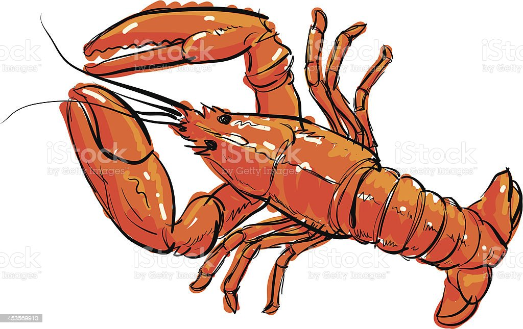 Cooked Lobster vector art illustration