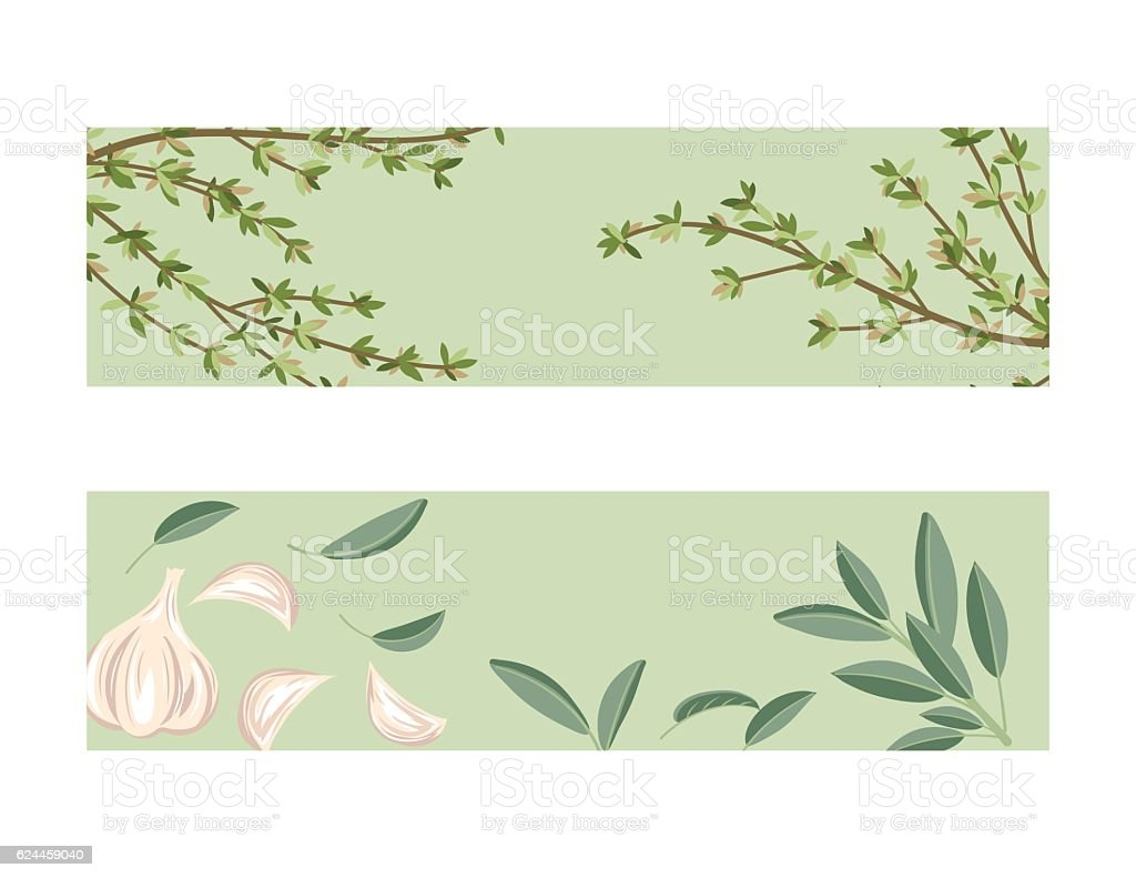 Cooking Banner With Herbs On A Green Base vector art illustration