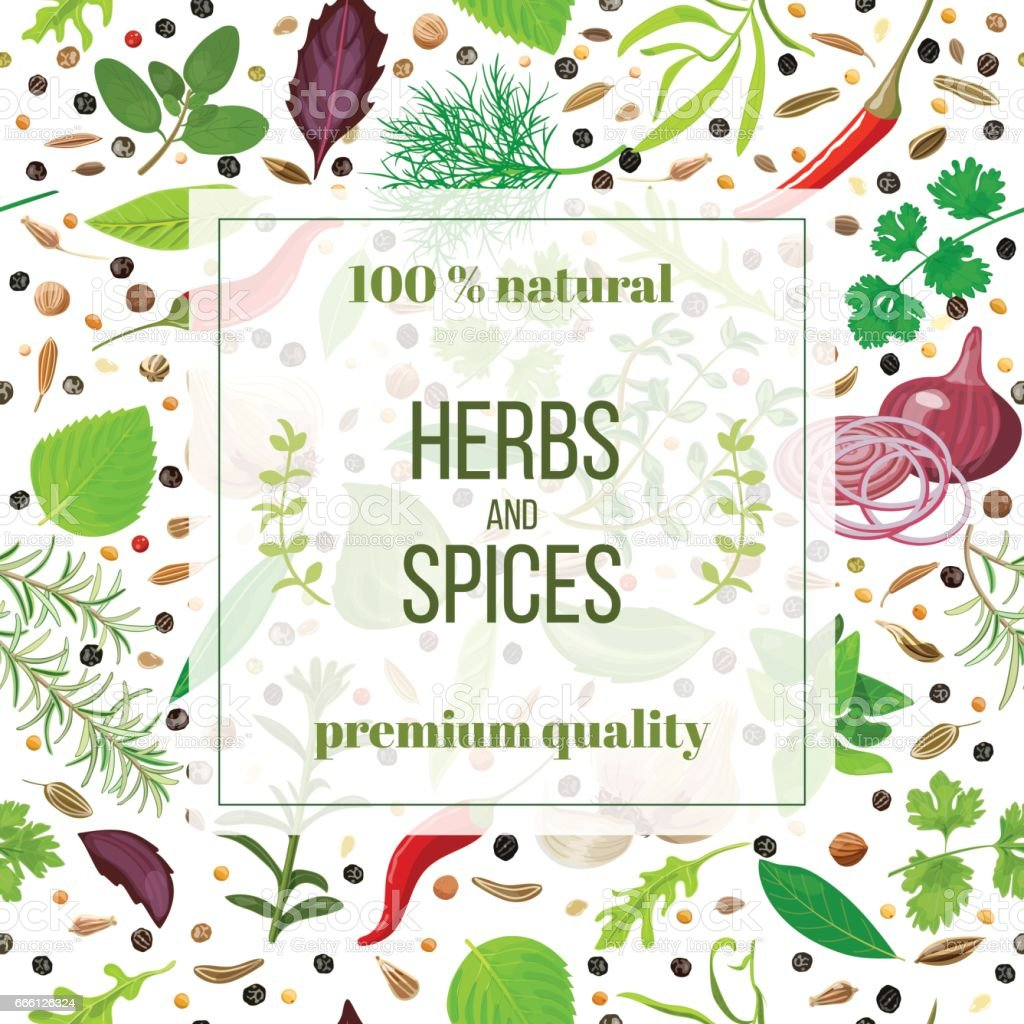 Cooking herbs and spices seamless pattern set vector art illustration