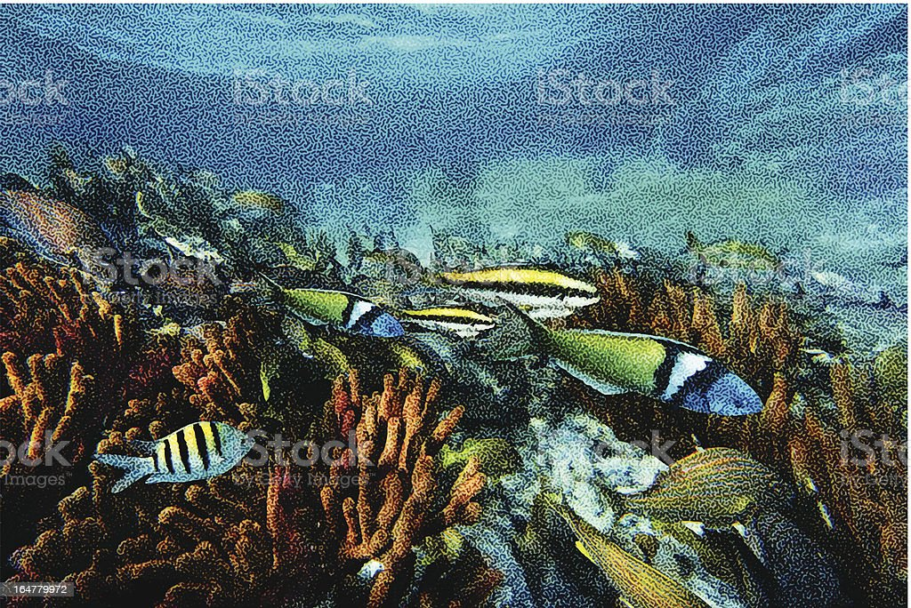 Coral Reef and Tropical Fish vector art illustration