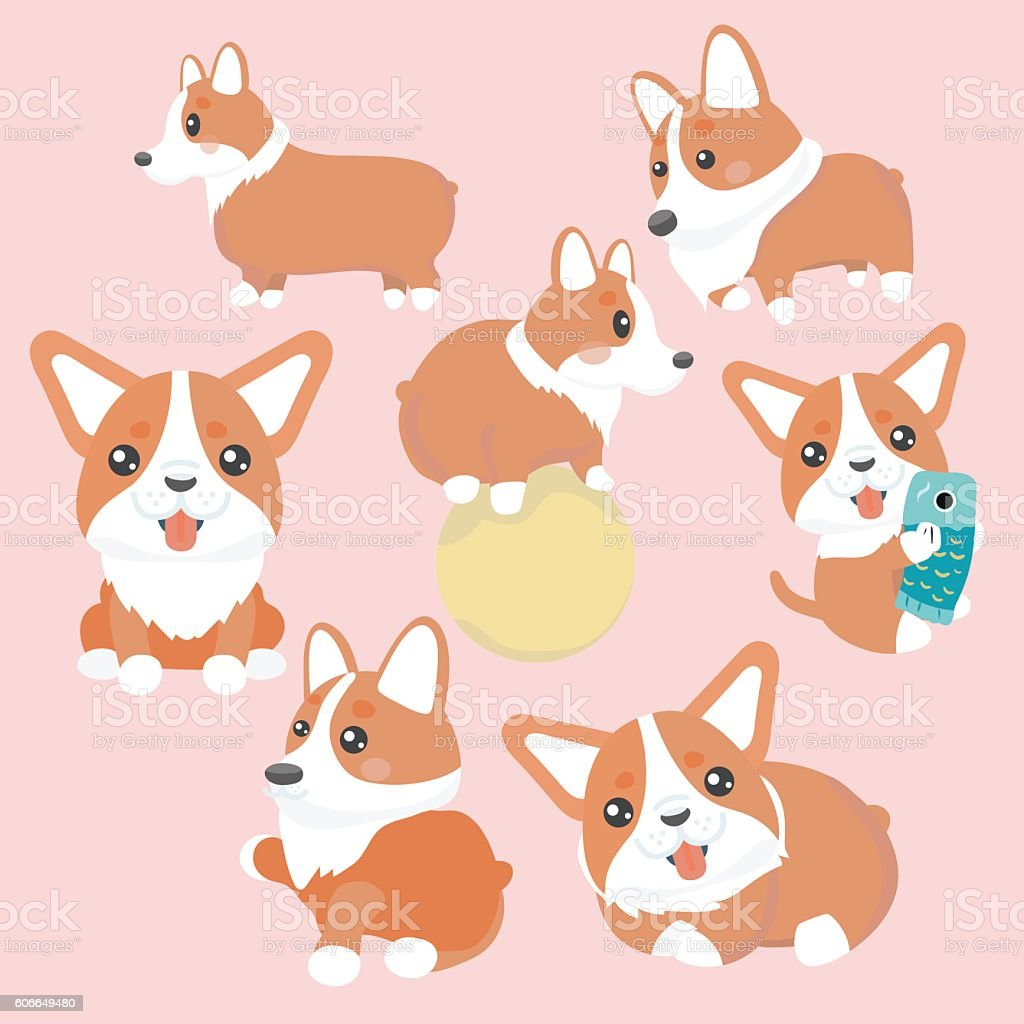 Corgi dog characters set. vector art illustration