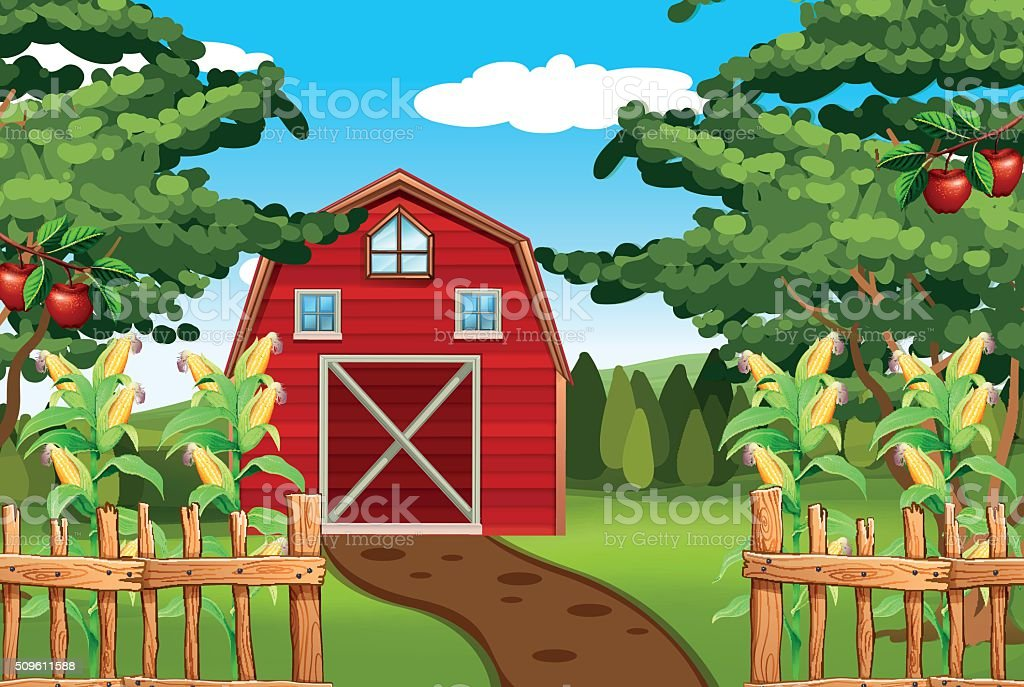 Corn and apples on the farm vector art illustration
