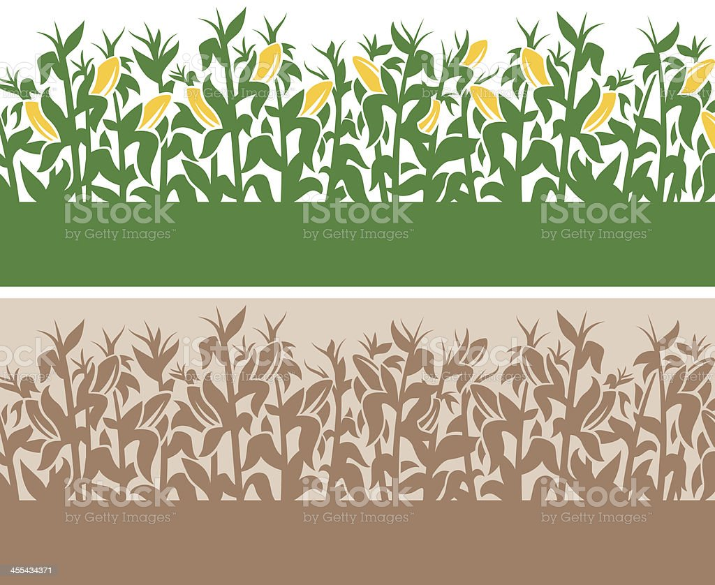 Corn Background vector art illustration