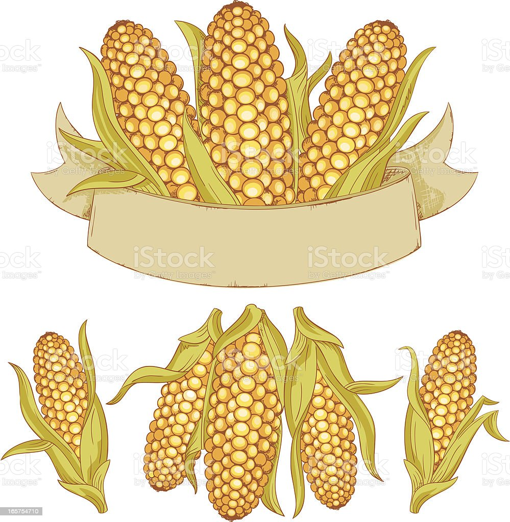 Corn Crop Ribbon royalty-free stock vector art