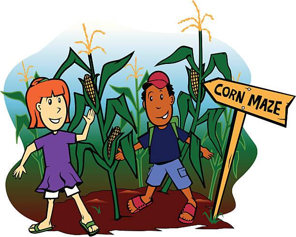 Corn Maze Clip Art, Vector Images & Illustrations - iStock