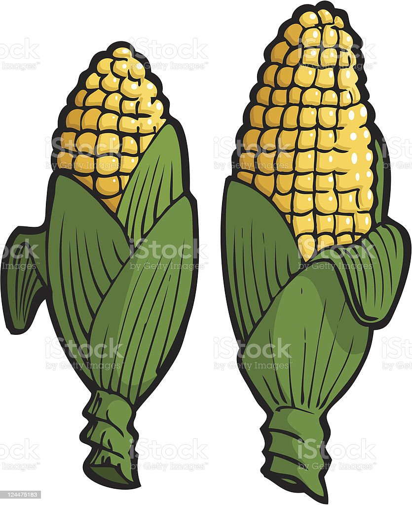 Corn on the Cob royalty-free stock vector art
