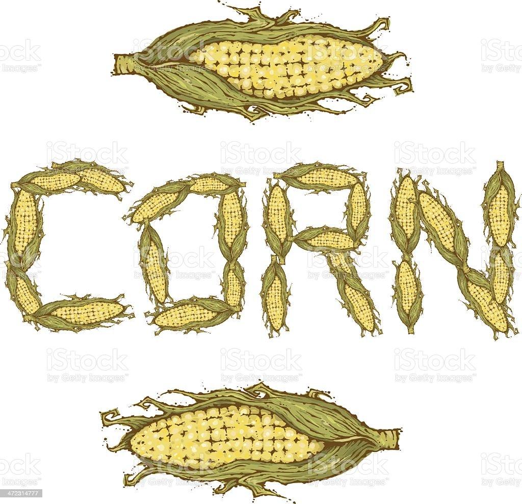 Corn on the Cob vector art illustration