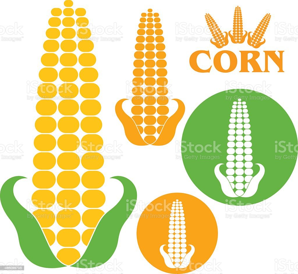 Corn vector art illustration