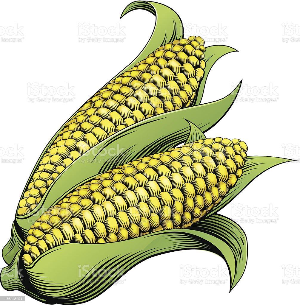 Corn vintage woodcut illustration vector art illustration