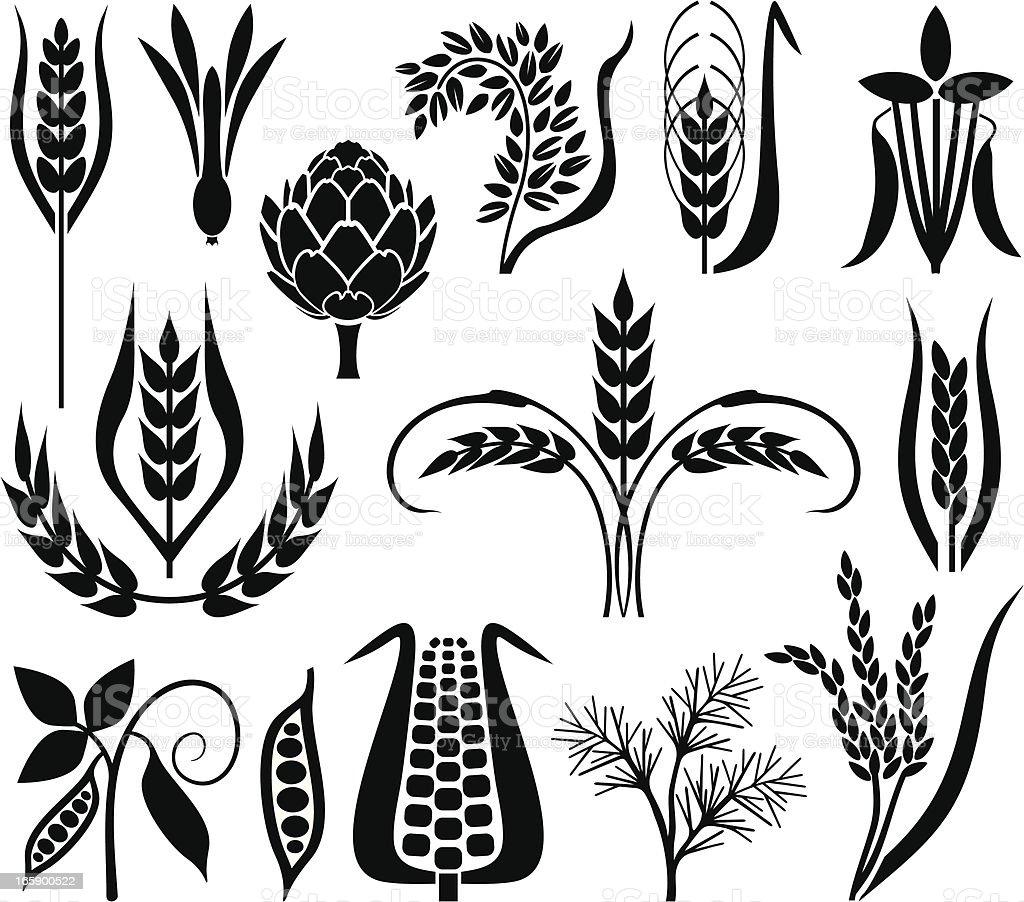 Corn's set royalty-free stock vector art