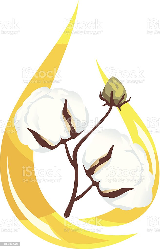 Cotton seed oil. royalty-free stock vector art