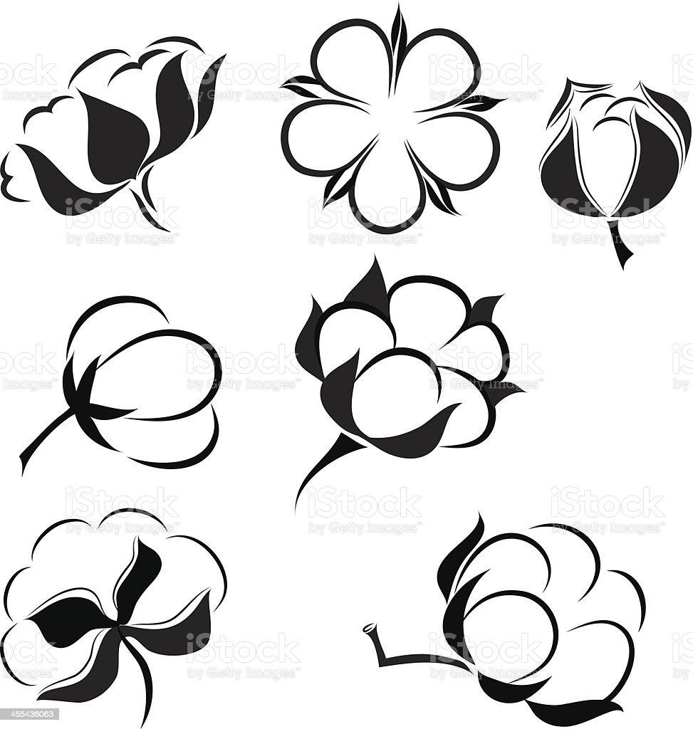 cotton vector art illustration