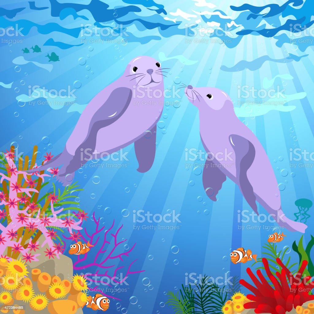 Coule Seal Swimming Under the Sea vector art illustration