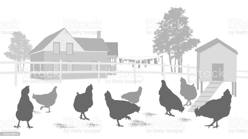 Country House And Chicken Coop vector art illustration