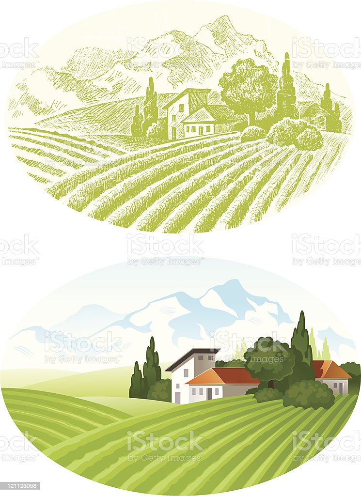 Country landscape with cultivated field royalty-free stock vector art