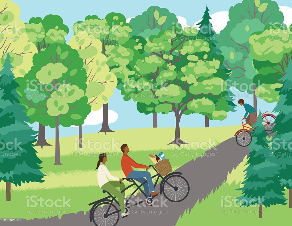 Couple Bicycling On A Path In The Park vector art illustration