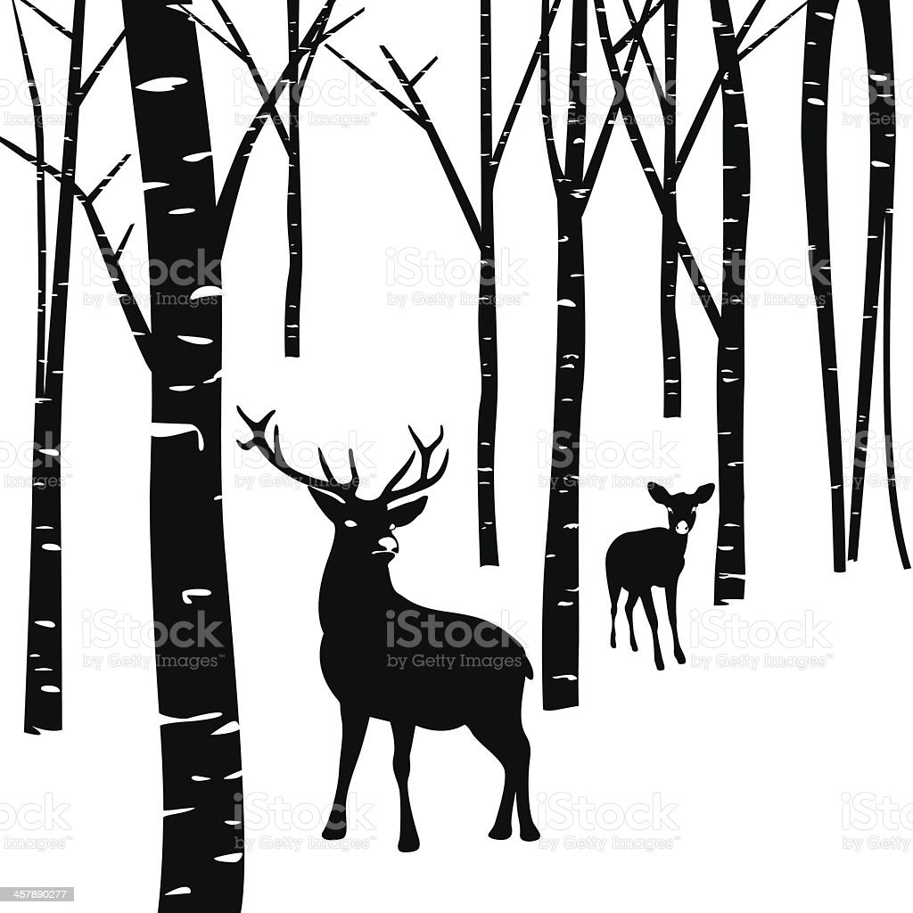 Couples of deer and forest vector art illustration
