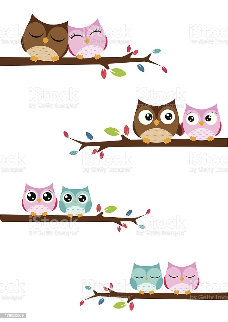 Couples owl on the branch royalty-free stock vector art