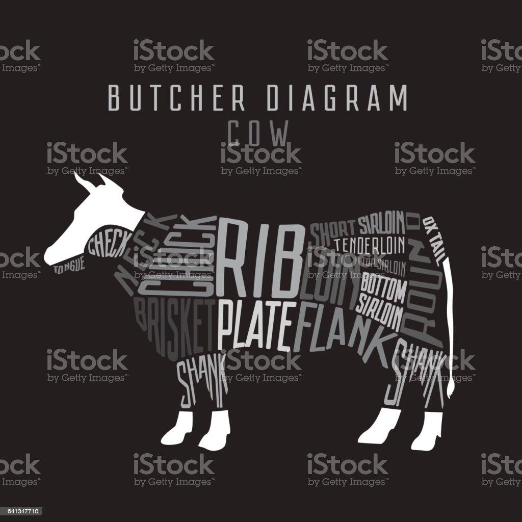 Cow butcher diagram. Cut of beef set. Typographic vintage vector art illustration